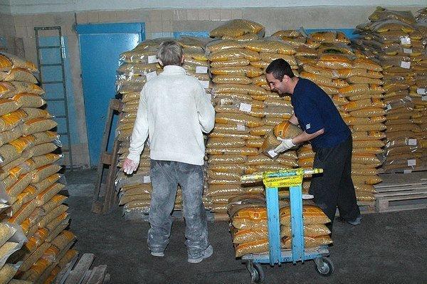 История появления макаронных изделий. Макароны в России. 18