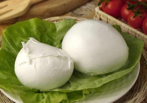 Сыр моцарелла. Состав сыра, его виды и происхождение 1