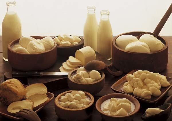 Сыр моцарелла. Состав сыра, его виды и происхождение 7