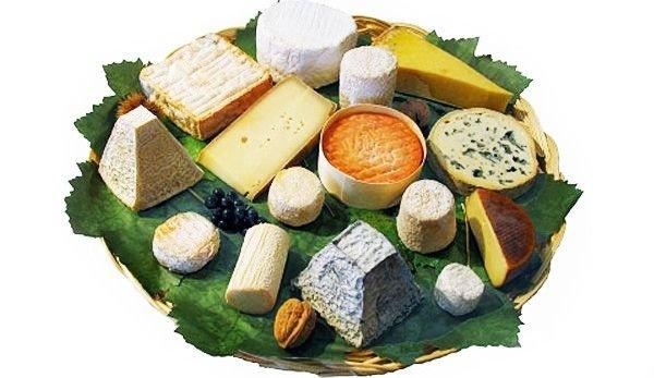 Виды сыров. Их использование, хранение, сорта и вкус 1