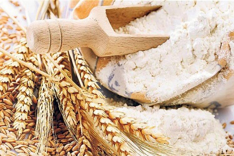 Особенности пшеницы твердых сортов или durum. Сравнение муки группы А и Б
