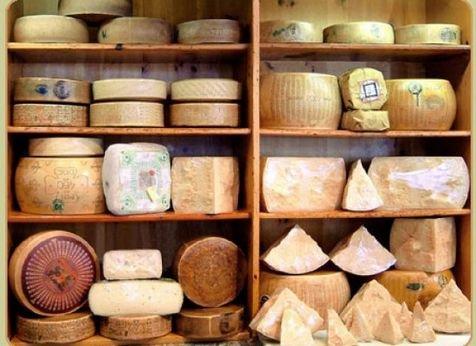 Виды сыров. Твердые сыры