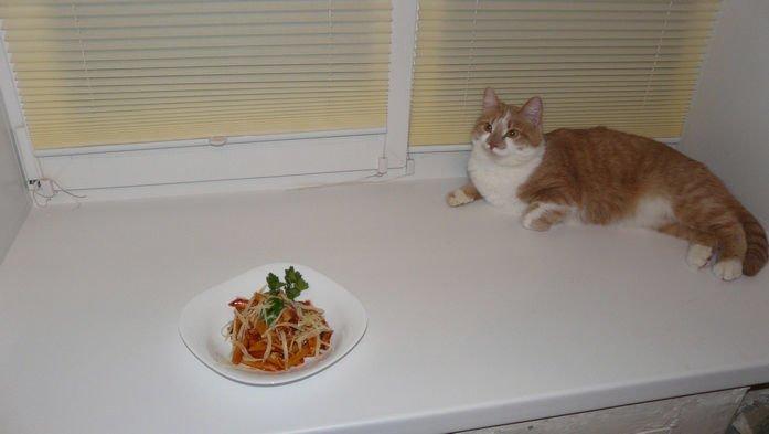 наш кот и пенне аматричана