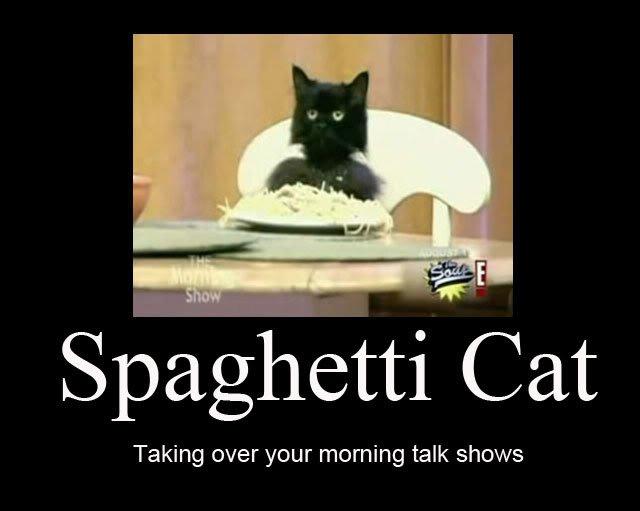 Спагетти кот (Spaghetti Cat) 11