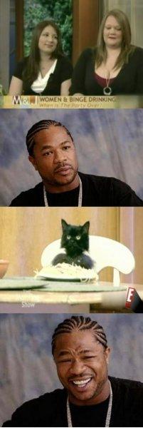 Спагетти кот (Spaghetti Cat) 5