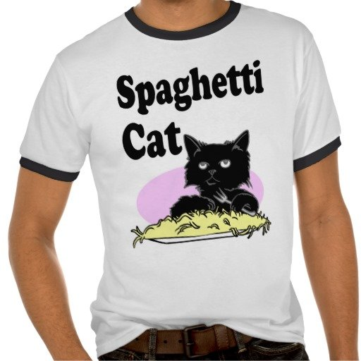 Спагетти кот (Spaghetti Cat) 15