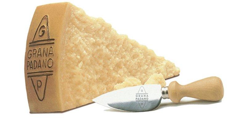 Каким сыром можно заменить пармезан. Аналог Parmigiano-Reggiano сыр Грана Падано