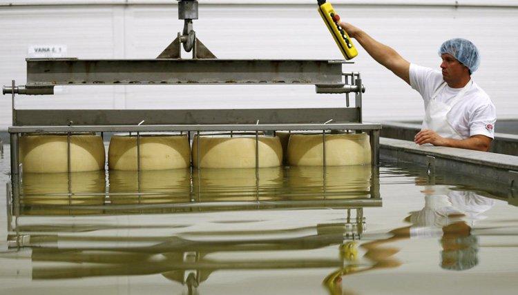Как производят настоящий пармезан. Подготовка сыра в соленом растворе