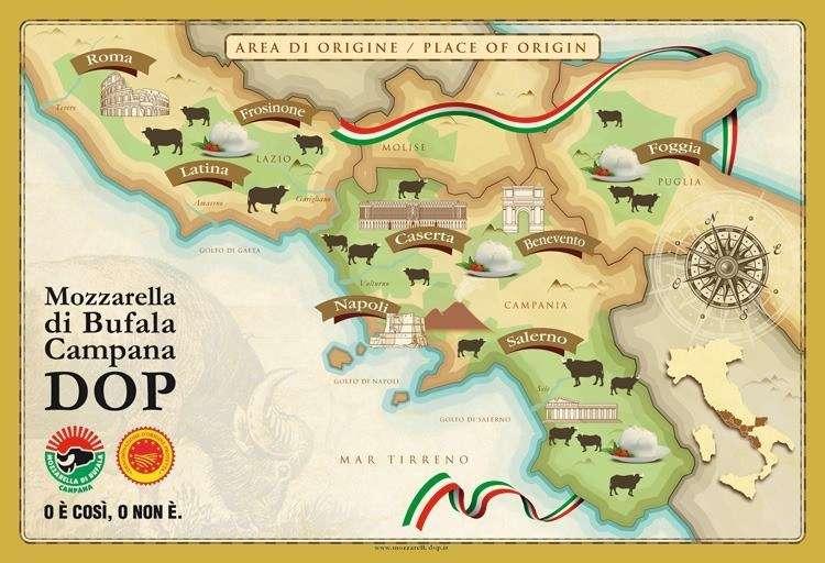 Где производят настоящую итальянскую моцареллу. Area DOP Mozzarella Campana