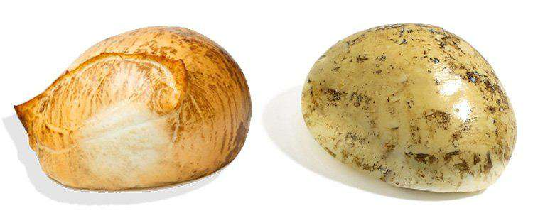 Копченая моцарелла двух видов копчения. Mozzarella affumicata