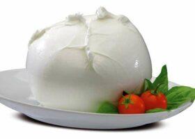 Итальянская Моцарелла. История сыра, состав, производство, польза, рецепты и многое другое