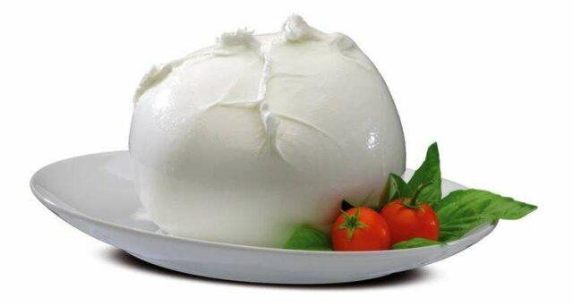 Сыр моцарелла фото. Все о сыре mozzarella
