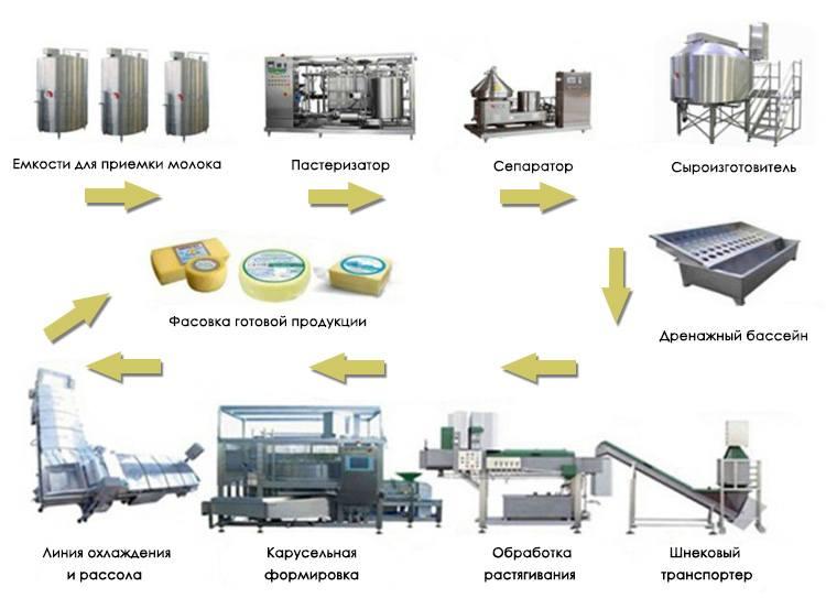 Производство моцареллы в промышленных масштабах в России