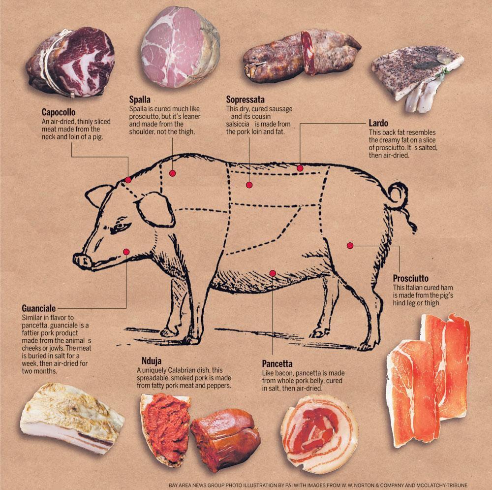 Из какой части свиньи делают разные виды мяса